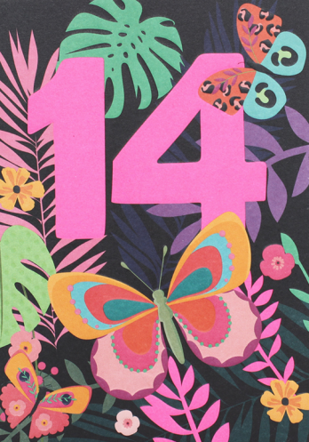 Age 14 butterfly birthday card