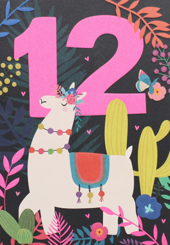 age 12 birthday card
