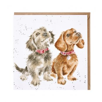 Wrendale dogs card
